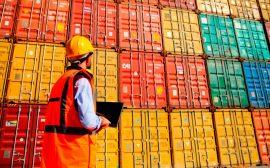 Actualmente en España hay 28 Autoridades Portuarias que gestionan 46 puertos de interés general.