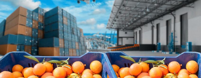 El sector agrario español aguanta el tipo a nivel exportador.